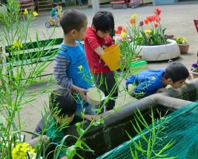 園庭の四季_春